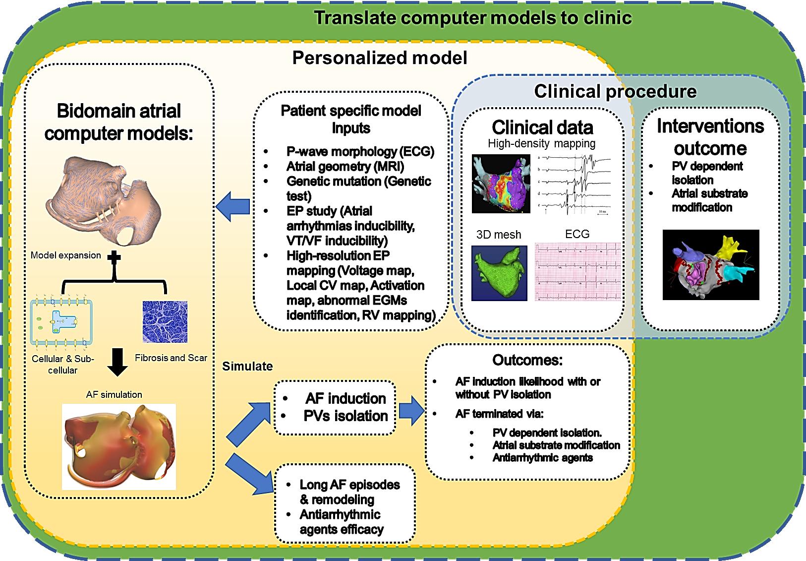 Schema del progetto di ricerca sulle aritmie cardiache ereditarie finanziato dal FNS